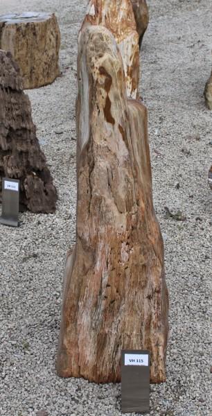 Versteinertes Holz ca. 24x15x80cm