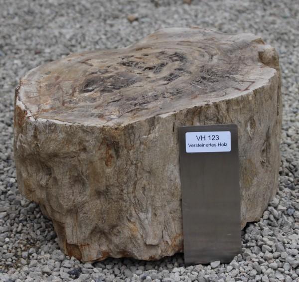 Versteinertes Holz ca. 31x24x20cm