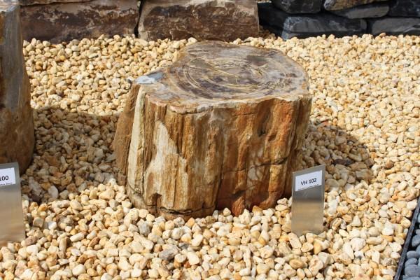 Versteinertes Holz ca. 34x24x26cm