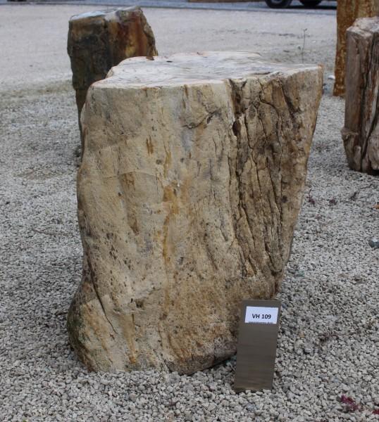Versteinertes Holz ca. 38x28x46cm