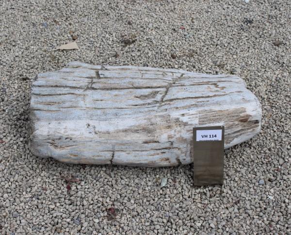 Versteinertes Holz ca. 47x26x12cm 2. Wahl