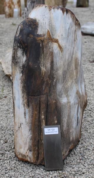 Versteinertes Holz ca. 35x16x50cm 2. Wahl