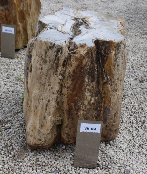 Versteinertes Holz ca. 30x25x34cm