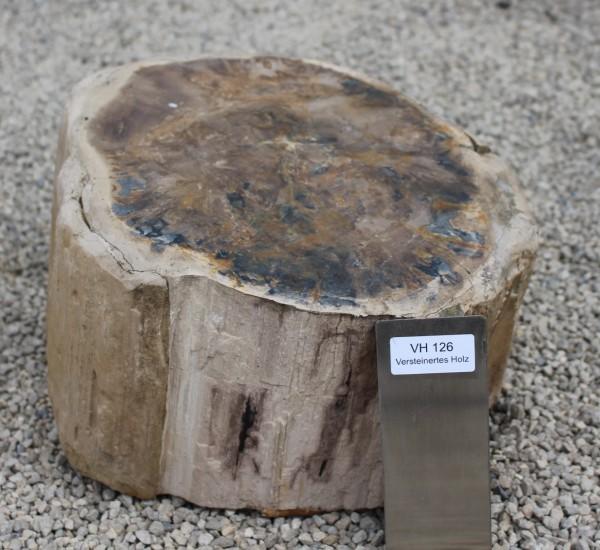 Versteinertes Holz ca. 33x30x18cm 2. Wahl